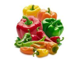 Poivrons Rouges, Jaunes et Verts, Piments, MARQUILLANES, spécialiste producteur et import/export fruits, agrumes et légumes frais, Saint-Charles International