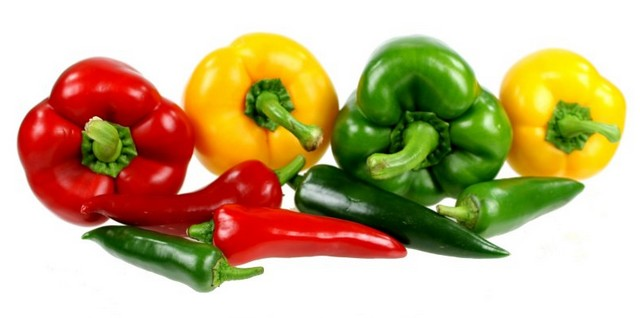 Peppers and Chili Peppers Campaign