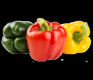 Poivrons Rouges, Verts, Jaunes, MARQUILLANES, spécialiste producteur et import/export fruits, agrumes et légumes frais, Saint-Charles International