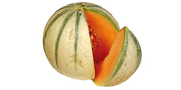 THE HEALTHY AND FRESH MELONS FROM MOROCCO AND SPAIN !