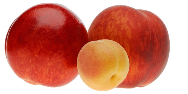 PEACHES, NECTARINES, APRICOTS ARE COMING ! Reserve pallets since now